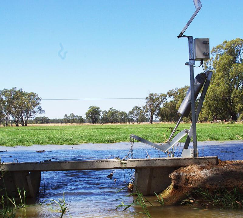 flood irrigation 1